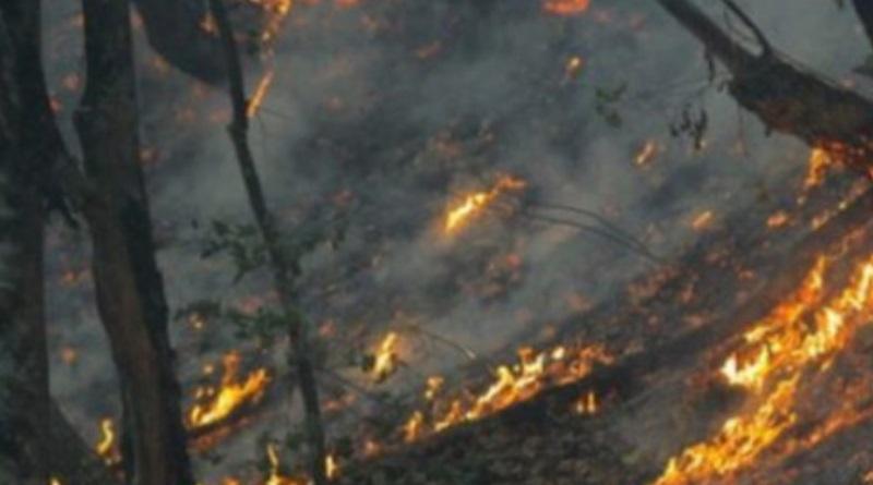 Gori Čapljina, požari na 11 mjesta