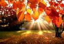 Ljetne temperature u listopadu: Objavljena prognoza za sljedeći tjedan
